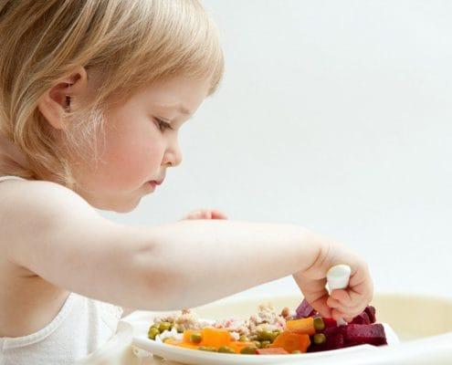 cardapio alimentar de 1 a 3 anos