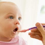 cardapio alimentar de 6 a 11 meses